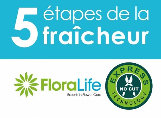 5 Steps FloraLife®