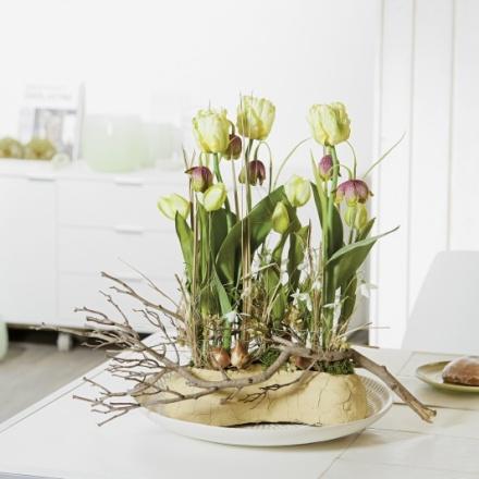 spring tray