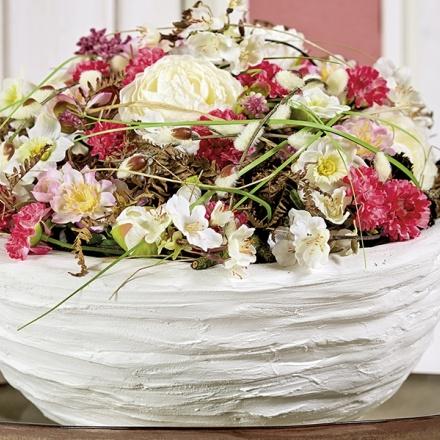 gypsum bowl