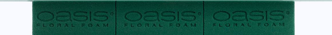 OASIS® Wet Foam